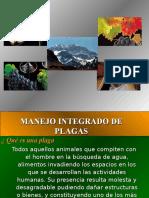 4.-Presentación Manejo Integrado de Plagas