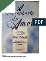 A Descoberta Do Amor (Psicografia Helena Mauricio Craveiro Carvalho - Espiritos Cairbar Schutel e Diversos)