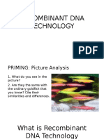 Recombinant DNA for Upload