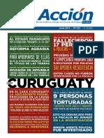 REVISTA ACCION - JUNIO 2015 - N 355 - PORTALGUARANI