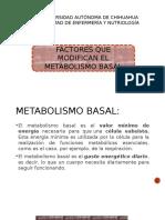 Factores Que Modifican El Metabolismo Basal