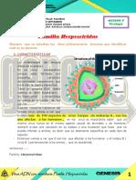 Virologia 3 Familia Herpesviridae