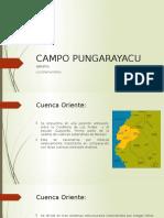 Campo Pungarayacu Diapositivas