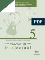 Retraso Del Desarrollo y Discapacidad Intelectual
