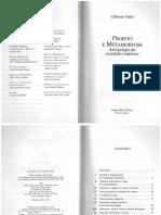 unidadeEfragmentacao_gilbertoVelho.pdf