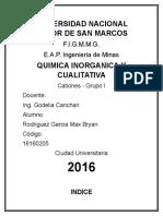 Informe Cationes I Grupo