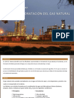 93185486 Deshidratacion Del Gas Natural