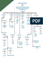 A Mapa Conceptual