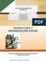 Exposicion Equipo 6 Estructura y Organizacion Social