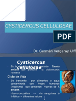 CYSTICERCUS (1)