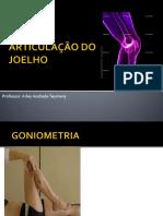 Aula prática do Joelho.pdf