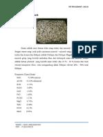 Batu Beku Granit