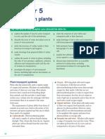 transport in plants.pdf