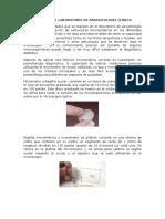 La Medición en El Laboratorio de Parasitología Clínica