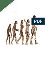 El Orígen de Las Especies