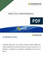 04 Plantalla Info Sustetacion Prac Profesional Admon