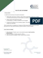 Pauta Informe de Practica