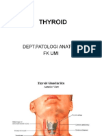 Thyroid,Prakt Fk Umi