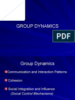 SW440Group Dynamics