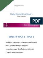 DM1 diabetis mellitus 1