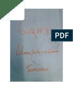 Guía No. 30