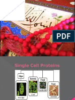 singlecellprotein-140416102658-phpapp02