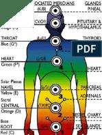 Thyroid Glandss