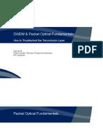 DWDM & Packet Optical Fundamentals