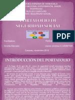Diapositivas Del Portafolio de Seg. Social