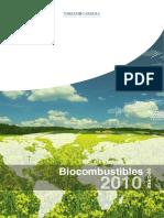 Informe-Biocombustibles-2010