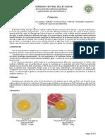 Informe Osmosis Grupo1