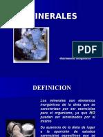 07 Minerales