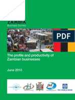The Profile and Productivity of Zambian Businesses - ZBS June 2010