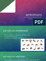 Artopodos