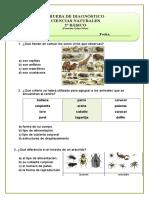 2º Básico 2015 diagnostico.doc