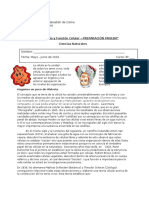 Guía N° 2 Teoría y Función Celular 8° BÁSICO.docx