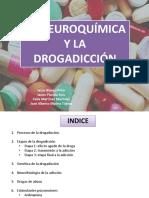 Neuroquímica de La Drogadicción