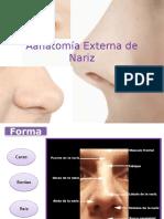 Anatomía y Fisiología de Nariz