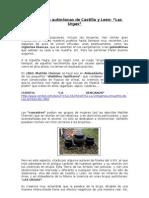 Unas brujas autóctonas de Castilla y León