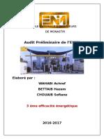 Audit-préliminaire.docx