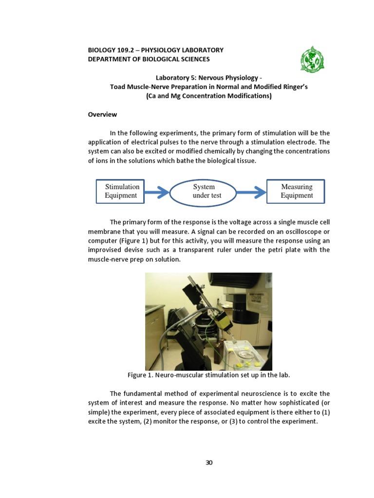 muscle stimulation lab