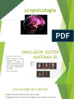 web_1_curso_-2015-2-_simulador_Biotk