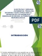 deshidratacindefrutasyverdurascontrespre-tratamientos-140815101805-phpapp02.pptx