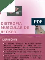 204950256-Distrofia-Muscular-de-Becker.pptx