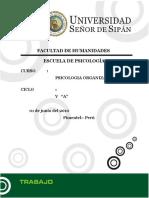 Programa Organizacional