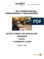 5to_MATRIZ de Competencias y Capacidades 2016