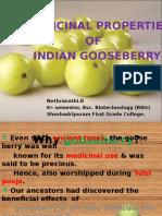 gooseberrypptenglish-140502060319-phpapp01