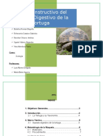 manual-instructivo-sistema-digestivo-tortuga (1).docx