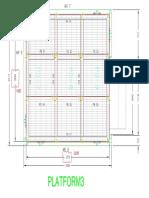 977 - PLATFORM-3 DETAILS.pdf