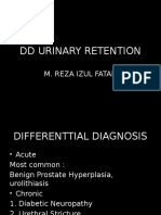 Css Dd Urinary Retention